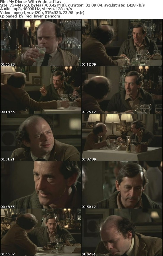 My Dinner With Andre 1981 DVDRip Xvid-FiLELiST