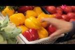 """""""Раскрывая тайны здоровья"""": Любви все возрасты покорны (2016) SATRip"""