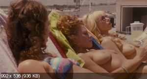 Фортуна Вегаса / Lay the Favorite (2012) BDRip-AVC | Лицензия
