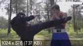 Техника эффективных ударов ногами (2013) Видеокурс