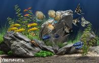 Dream Aquarium 1.29 Final Portable - �������� �� ������� �����