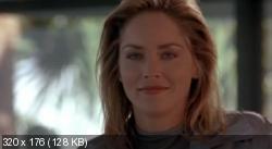 Специалист (1994) DVDRip от MediaClub {Android}