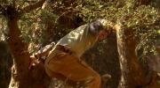 По следам великих русских путешественников (Серии 01-07 из 07) (2014) HDTVRip