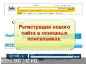 Новичок SEO-шник 2.0. Видеокурс (2014)