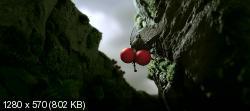 Букашки. Приключение в Долине муравьев (2013) BDRip 720p от HELLYWOOD