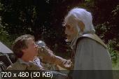 ����������� ������ - ������� / Ewok Adventures - Dilogy (1984 - 1985) 2xDVD5