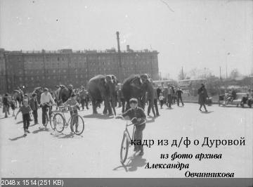 http://i65.fastpic.ru/thumb/2014/1104/ec/86f2368156293a9c27873be54fefd7ec.jpeg