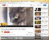 Citrio 38.0.2125.244 - веб-браузер