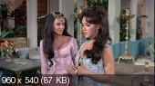 Каникулы в гареме / Harum Scarum (1965) DVDRip-AVC
