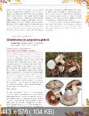 Михаил Вишневский - Лекарственные грибы. Большая энциклопедия (2014)