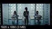 ������� ������� / Predestination (2013) BDRemux 1080p | DUB | ������ ����