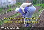 Позитивные котэ 04.12.14