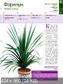 Комнатные и садовые растения от А до Я (№39 / 2014)