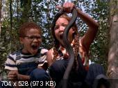 ���������� ��� / Eve's Bayou (1997) DVDRip | DVO