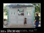 Демотиваторы '220V' 11.12.14