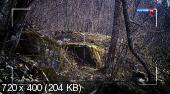 http://i65.fastpic.ru/thumb/2014/1214/fe/16665958d51785192f9844a4acc4c9fe.jpeg