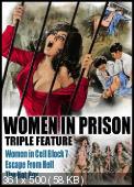 ����� �� ��� / Femmine infernali (1980) DVDRip | VO