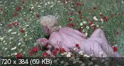Шесть шведок на Ибице (1981) BDRip