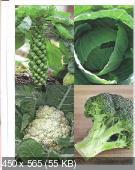Орлинкова - Про овощи (2008)