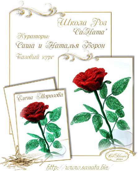 Школа Роз. Выпуск Базового курса 72c5e6bb60ea8401519dd4f762ea1ba5