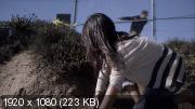Исчезнувшая (2013) Blu-Ray Remux (1080p)