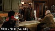 Старые ворчуны (1993) Blu-Ray Remux (1080p)