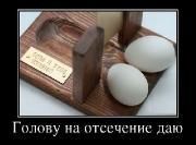 Демотиваторы '220V' 17.03.15