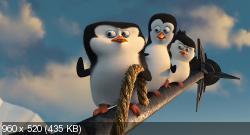 Пингвины Мадагаскара (2014) BDRip-AVC от HELLYWOOD {Лицензия}