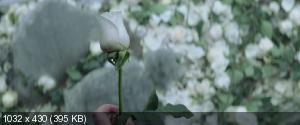�������� ����: �����-������������. ����� I / The Hunger Games: Mockingjay - Part 1 (2014) BDRip-AVC | DUB | iTunes