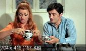 Дьявольски ваш / Diaboliquement vôtre (1967) DVDRip