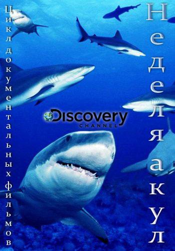 Discovery. ������ ���� / Shark Week [01-04] (2015) HDTV 720p �� GeneralFilm | D