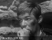 ���� ����� (1964) DVDRip-AVC �� ExKinoRay