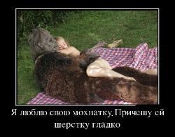 Подборка лучших демотиваторов №197