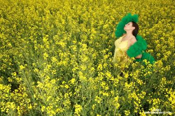 06-22 Yellow Field of Flowers AriaGiovanni.com