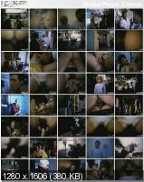Turb!h@o De Pr@zere$ (1987/DVDRip)