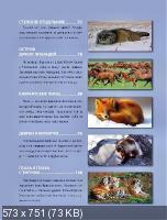 В. Обручев - Дикие животные России (2011) PDF
